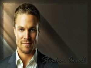 The actor Stephen Amell