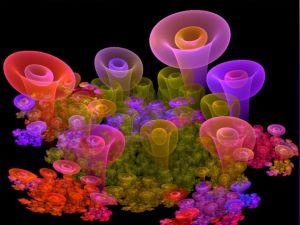 Abstract fungi