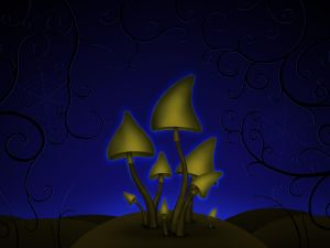 Mushrooms in the dark
