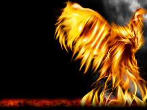 Reborn from fire
