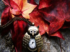 Owl shaped watch and chain