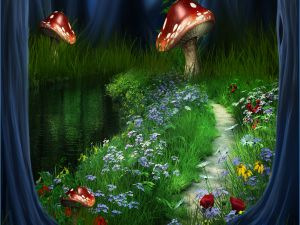 Flowers and mushrooms on the path