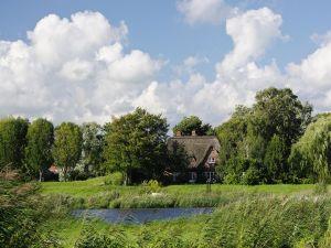 Houses among trees (Germany)