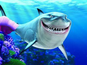 "Bruce ""Finding Nemo"""
