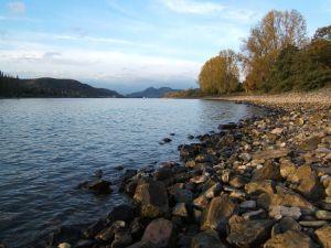 River Rhine in Unkel