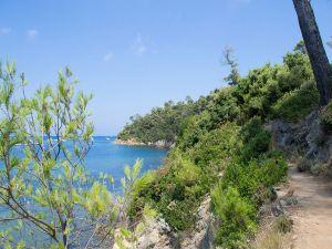 Island of Port-Cros (France)