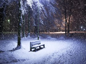Lonely bench in a snowy night