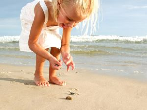 Girl collecting shells on the beach