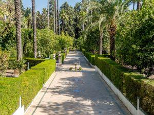 The Alcázar gardens, Seville (Spain)