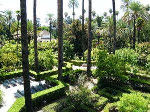 The Alcázar Gardens Seville