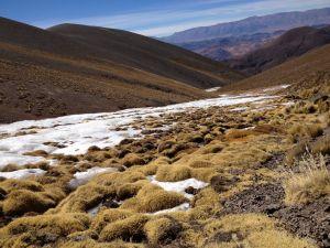 Frozen stream (Abra del Acay, Salta)