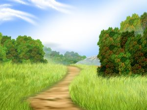 Path among vegetation