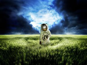 Astronaut in a wheat field