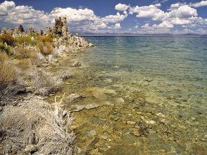 Mono Lakeshore (California, U.S.)