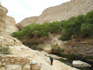 Nature reserve of Ein Ovdat