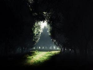 That path...