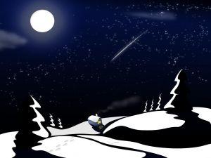 Shooting star in winter