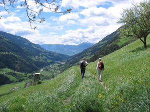 "Trekking in the ""Meraner Höhenweg"""
