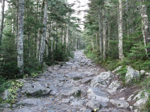 Tuckerman Ravine Trail (New Hampshire)