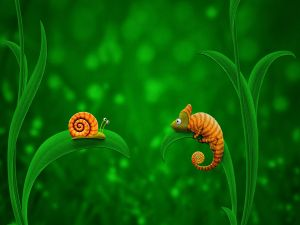 A snail and a chameleon