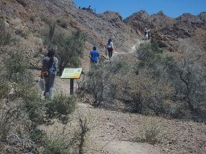 "Path in ""El Leoncito National Park"", Calingasta (San Juan)"
