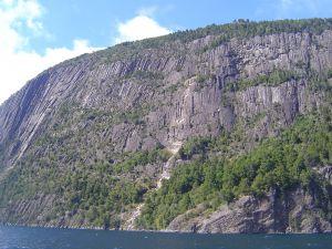 Cerro Abanico, in the Lanín National Park