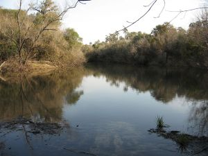 Palmar Stream (Entre Ríos)