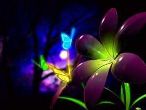 Bright butterflies on a flower