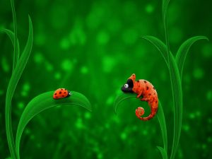 A ladybird and a chameleon