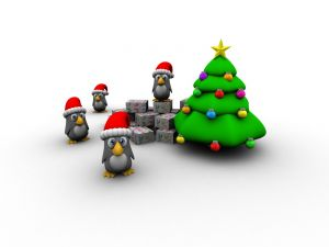 Penguins under the Christmas tree
