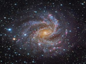 Galaxy NGC 6946