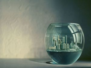 City into a fishbowl
