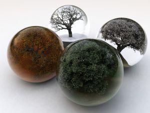 Spheres four seasons