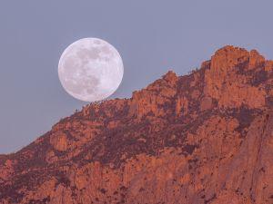 Perfect full moon