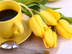 Tulips and a cup of coffee