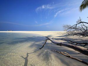 A beach of white fine sand