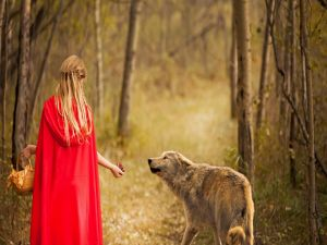 Riding Hood and the Wolf