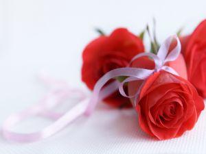 Roses for inspire love