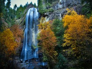 Waterfall and trees with the autumn colors