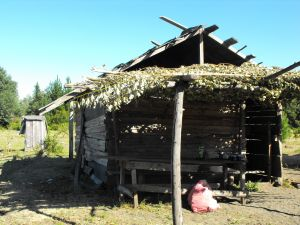 Small huts in southern Chile