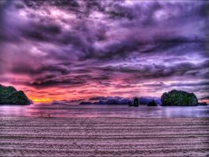 Landscape in lilac colors