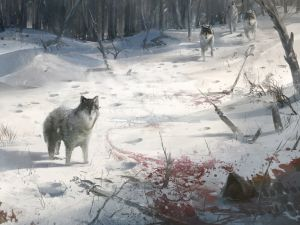 Assassin's Creed 3 (concept art)
