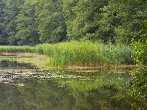 Schlaube Valley Nature Park, Brandenburg, Germany