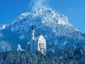 Snow next to Neuschwanstein castle