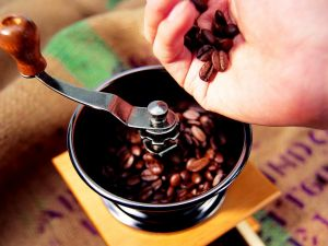 Grinding the coffee bean