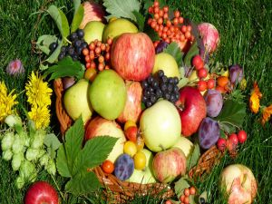 Assorted fruit on the grass