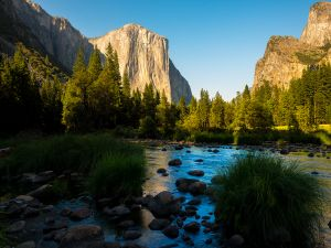 Tranquility, in Yosemite National Park (California)