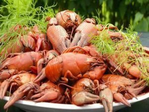 Dish with crayfish