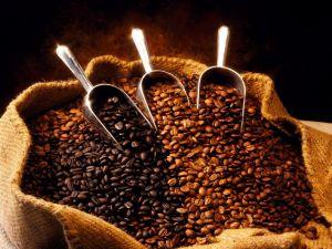 Three varieties of coffee