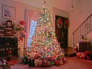 Christmas tree and many gifts